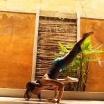yoga pose: eka pada bokasana